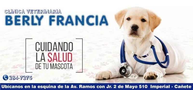CLINICA VETERINARIA BERLY FRANCIA