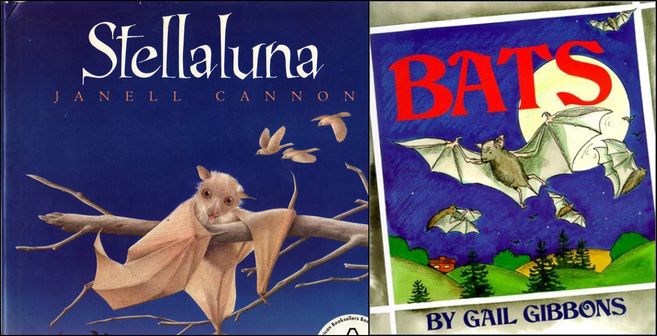 We've Read One Of My Favorites, Stellaluna, And Arepleting Some Reading  Activities From Our Fiction And Nonfiction Stellaluna And Bats Unit To Go  Along