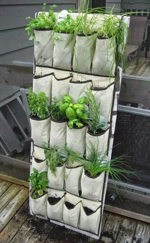 Jode Designs Diy Day Create A Vertical Garden