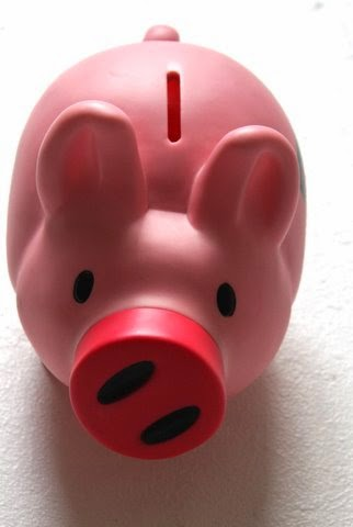 student loan pig