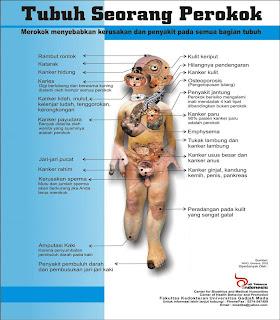 Rokok | Bahaya Ribuan Racun