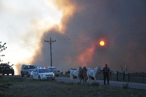 Black Forest Colorado wildfire June 2013 coloradoviews.blogspot.com