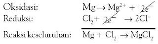 persamaan reaksi ion reduksi oksidasi