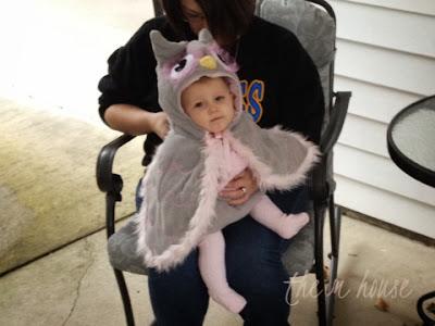 Halloween Owl | The M House