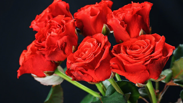 Fondo de Pantalla Ramo de Rosas Rojas