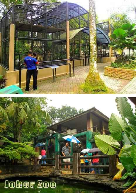 Johor baru zoo - beautiful senary