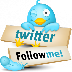 Seguimi su Twitter