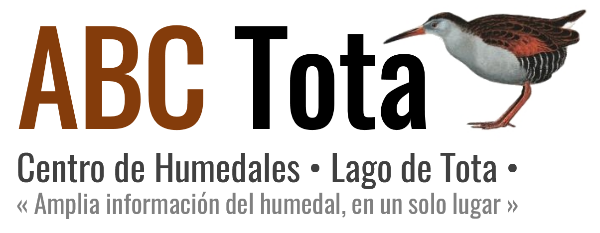 ABC Tota