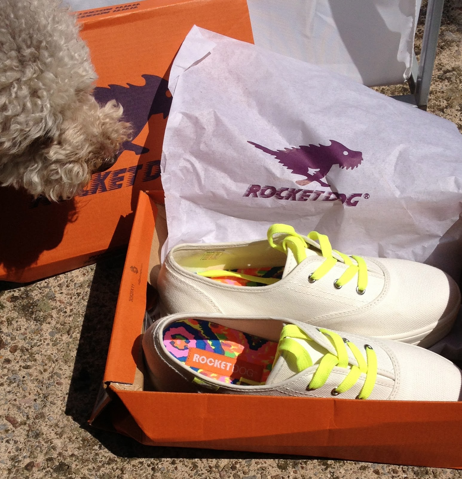 1f403efa35f0b9 Ted Baker XAREL Laser cut leather heeled courts Source · Review Rocket Dog Baker  Shoes I Blog The Fashion