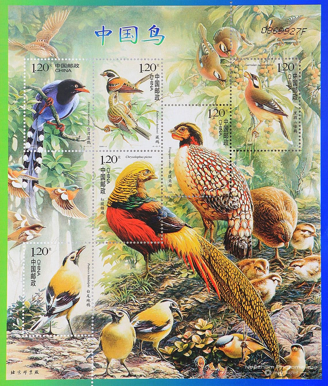China 2008 Birds of China miniature sheet