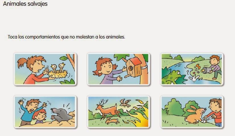 http://www.ceiploreto.es/sugerencias/cp.juan.de.la.cosa/Actividades%20PDI%20Cono/01/09/03/010903.swf