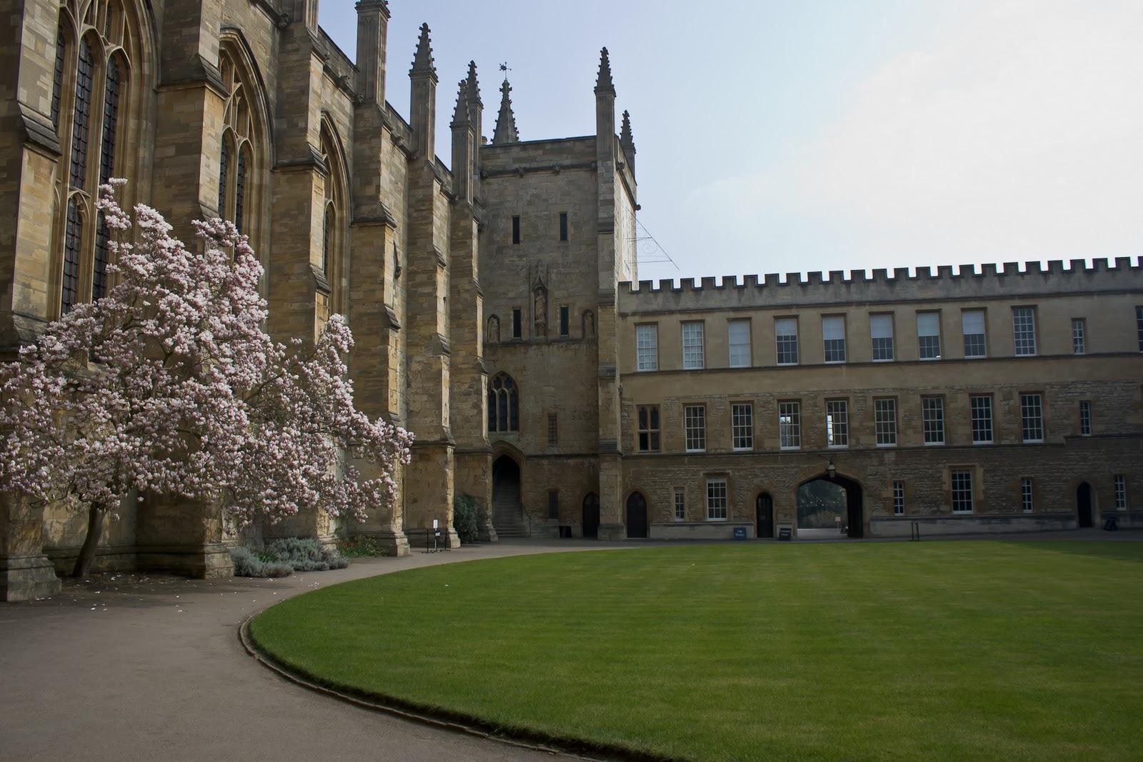 Среднее образование, колледжи в Англии, обучение в