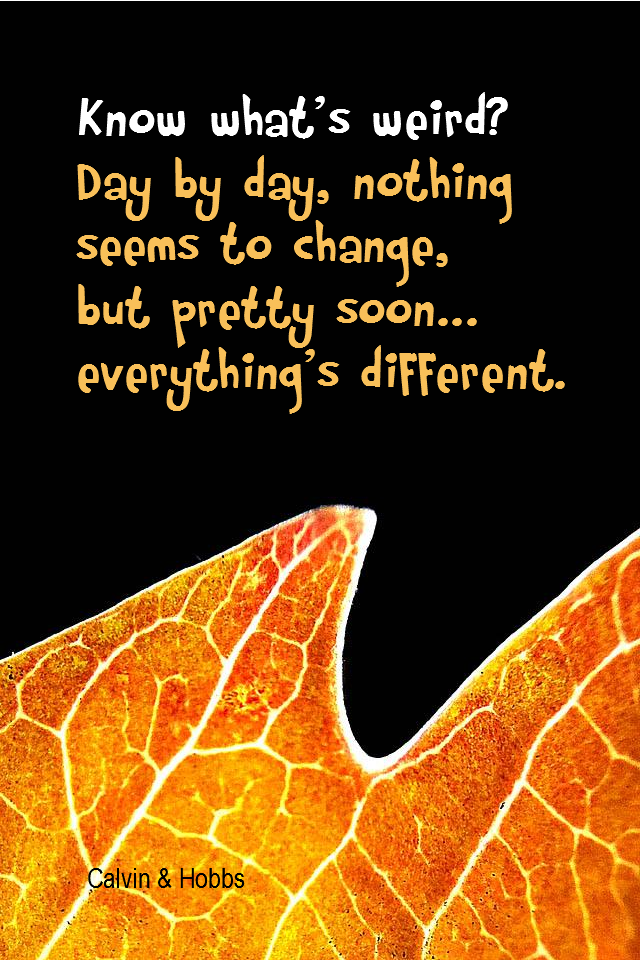 visual quote - image quotation for CHANGE - Know what's weird? Day by day, nothing seems to change, but pretty soon... everything's different. - Calvin & Hobbes