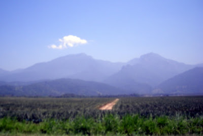 Mountains, La Ceiba, Honduras