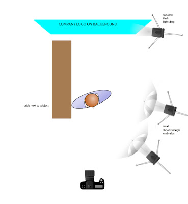 Diagram showing lighting setup for the photo above