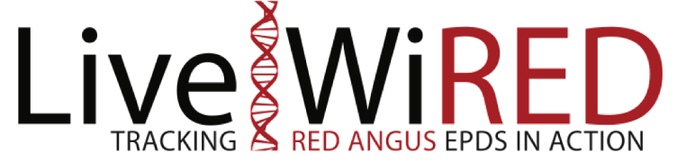 Live|WiRED Red Angus EPDs in Action