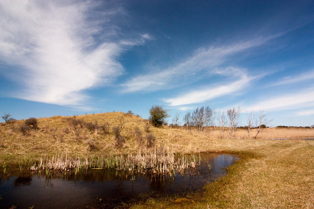 AWD landschap
