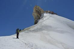 Pico Argentino