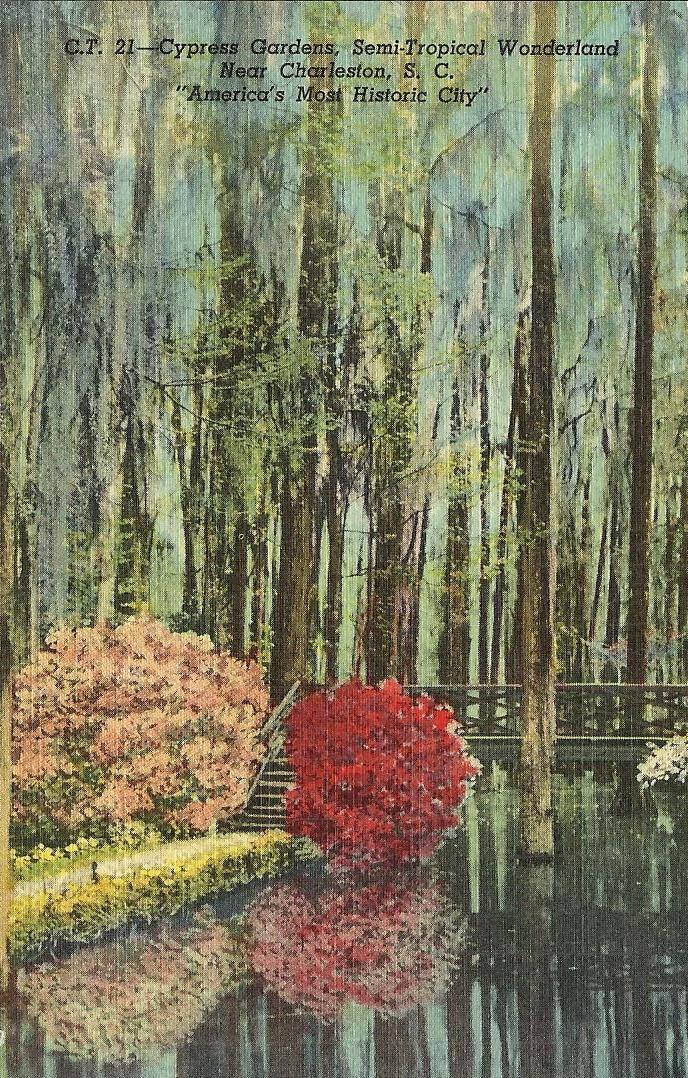 Vintage Travel Postcards South Carolina