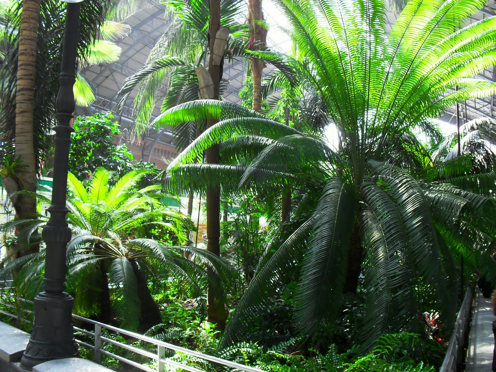 el guardi n del bosque jardines interiores y tropicales