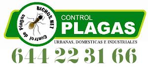 CONTROL DE PLAGAS EN BADALONA