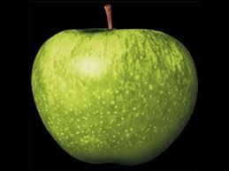 Risultati immagini per apple records