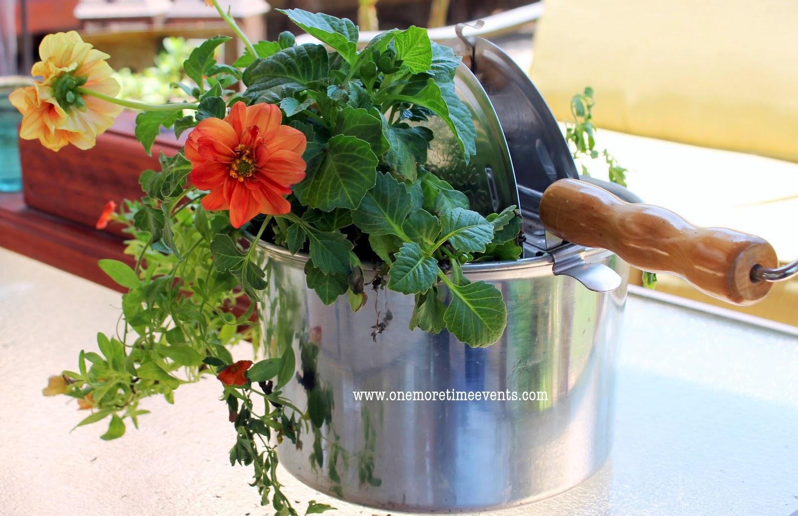 Unique Garden Container Ideas Photograph Gardening In Pop