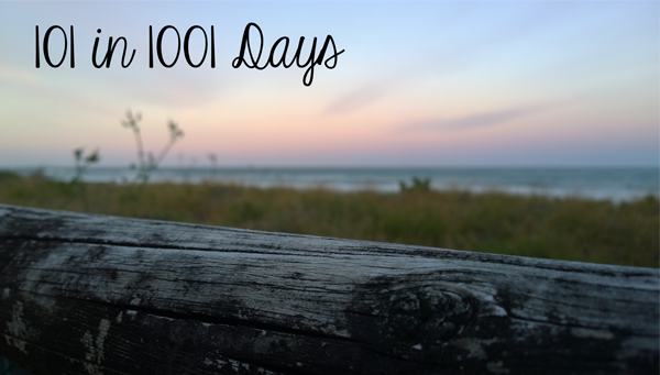 101 in 1001 days