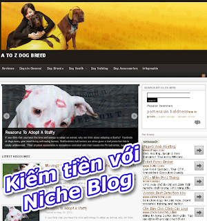 niche blog - kiem tien