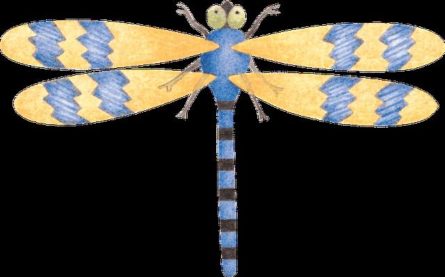 Insectos para imprimir imagenes para imprimir dibujos para imprimir - Fotos de insectos para imprimir ...