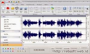 Free Audio Editor 2009 (FAE 2009)
