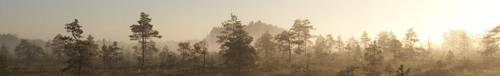 Rända Soolembesega Eestimaa kõige ürgsematesse ja müstilisematesse paikadesse