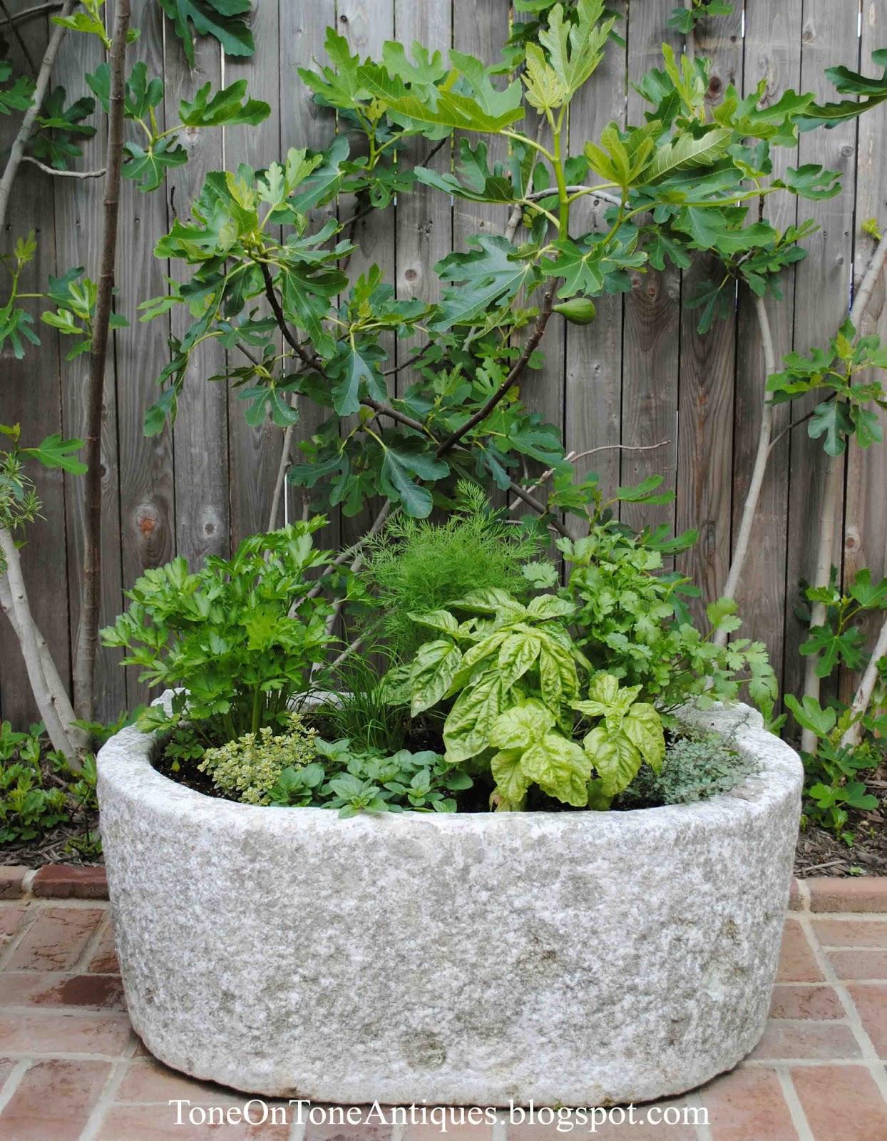 Tone On Tone A Trough Herb Planter