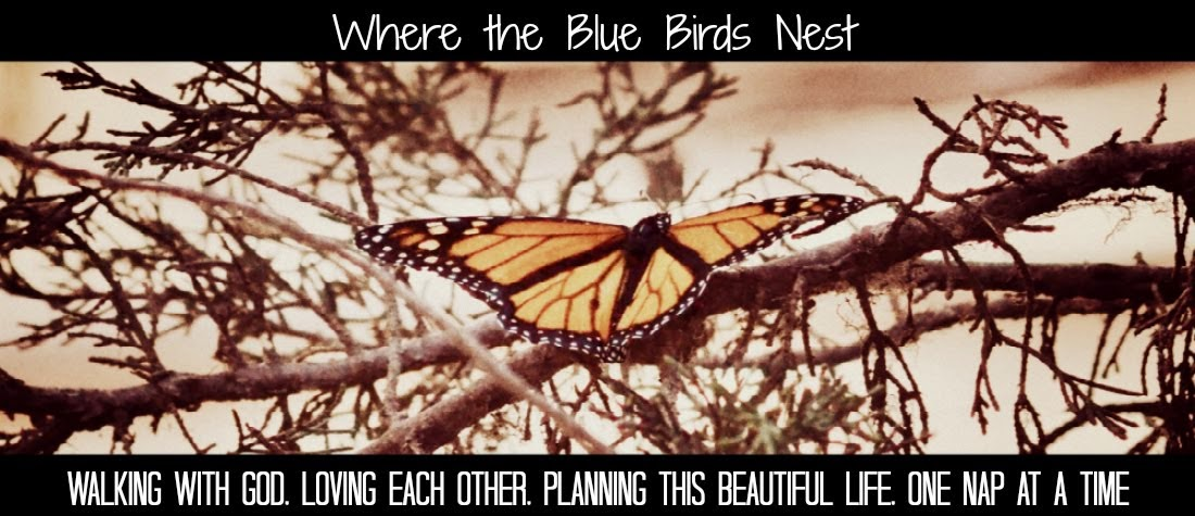 Where the Blue Birds Nest