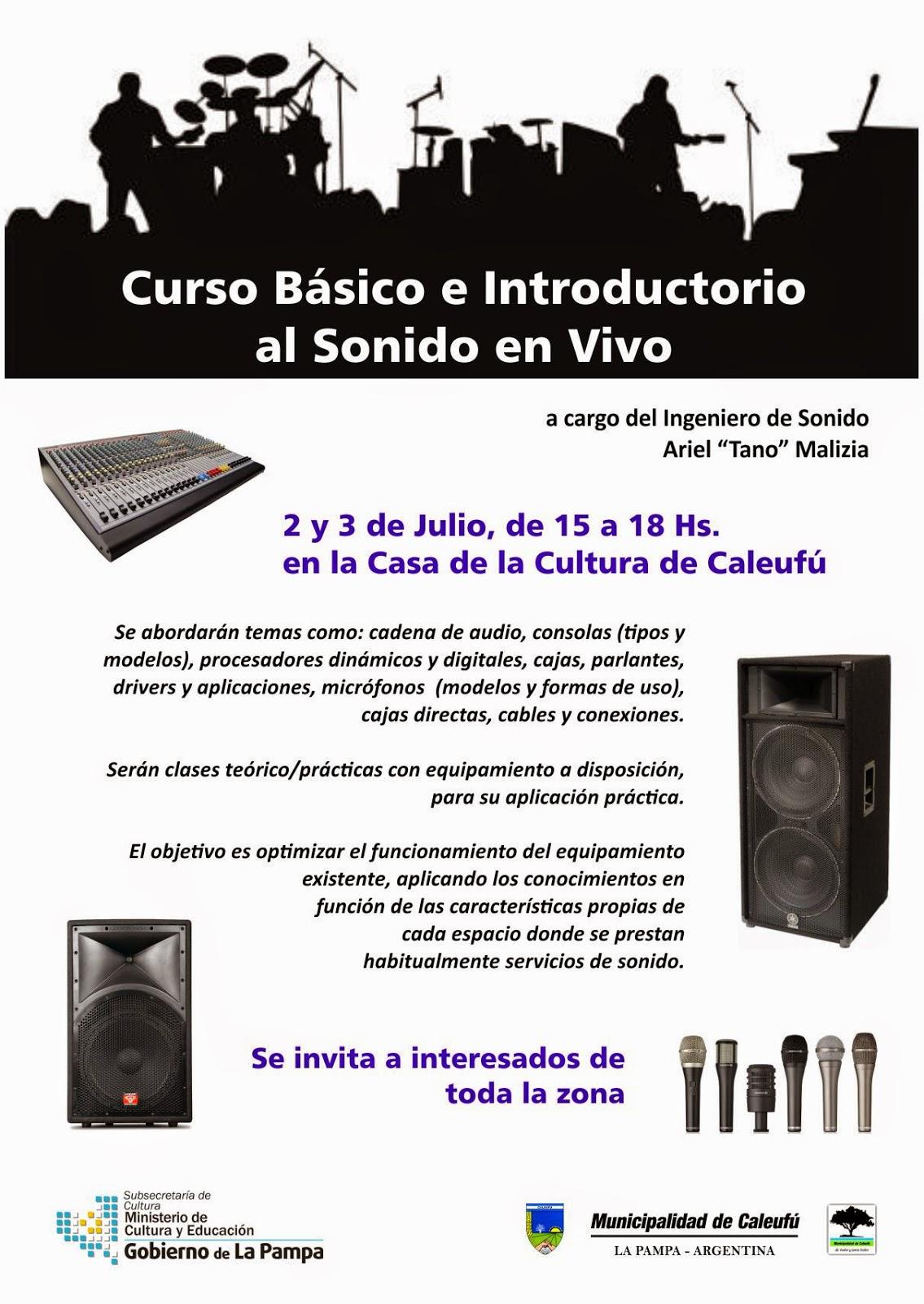 Municipalidad de caleuf curso de sonido en vivo for Municipalidad de avellaneda cursos