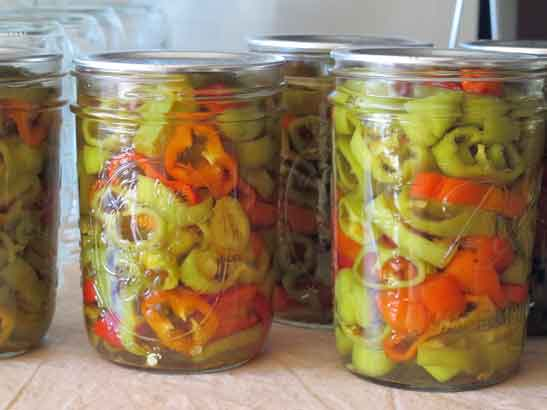 This is a recipe for pickled pepper rings. The Original recipe, in The ...