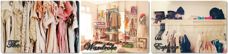 the wardrobe explorer