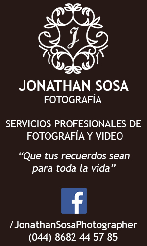 Servicios Profesionales