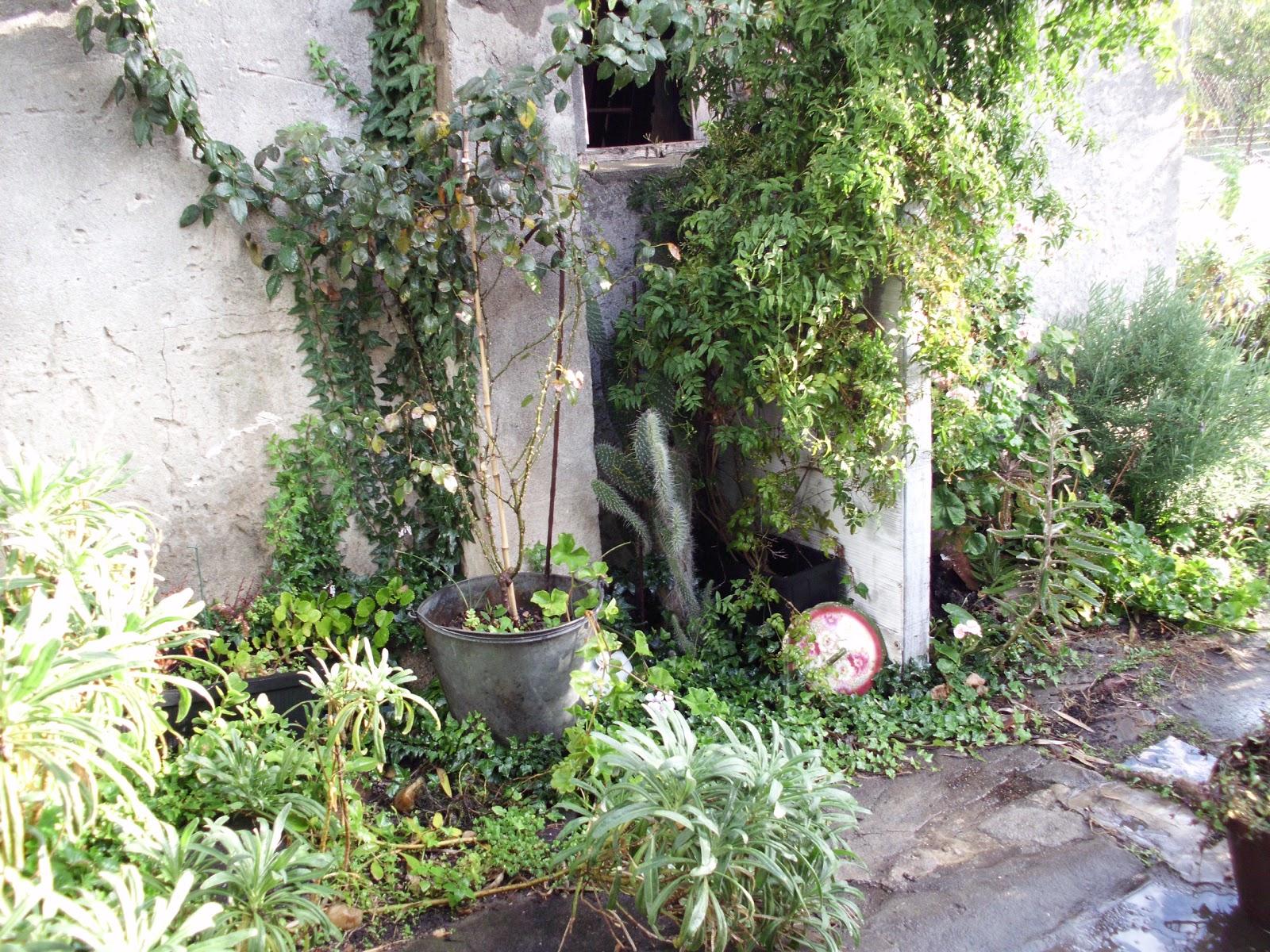 Despu s de la lluvia for Jardines vintage