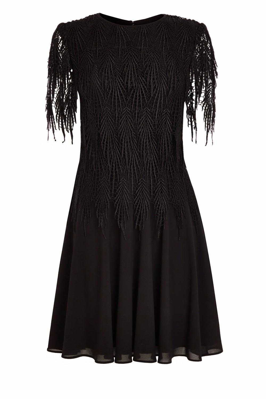 coast black simmer lace dress, coast black lace sleeve dress,