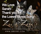 Zee and Zoe Blog