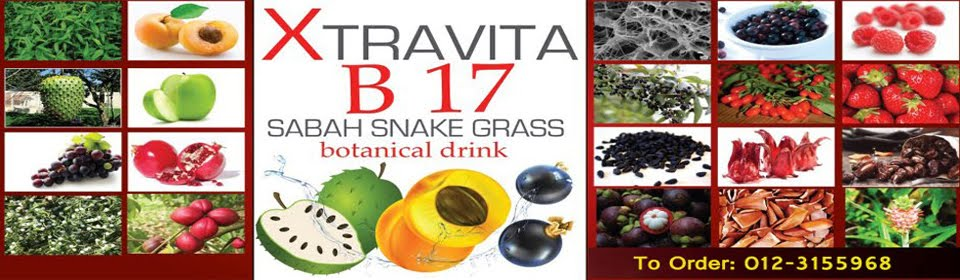 Xtravita B17 Sabah Snake Grass Botanical Drink