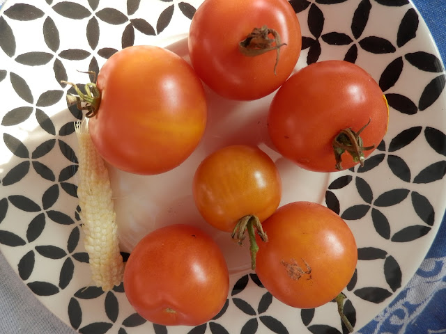 Tomatoes and Mini-pops mini sweetcorn.  My Garden Harvest, October 2015. secondhandsusie.blogspot.co.uk #ukgarden #uklogger #growyourown