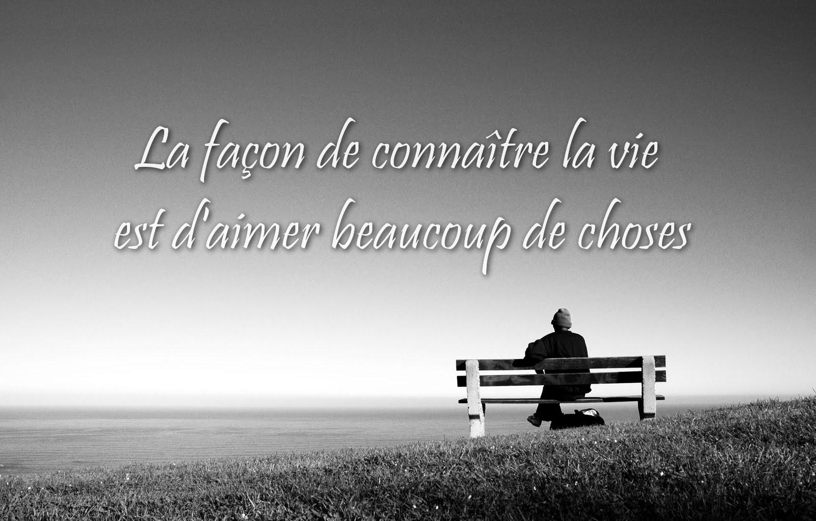 citation d'amour et la vie