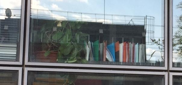 Les dossiers derrière les fenêtres du Palais de Justice de Grenoble