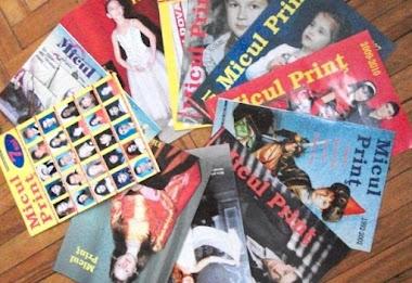 Proiectele literare ale Renatei Verejanu