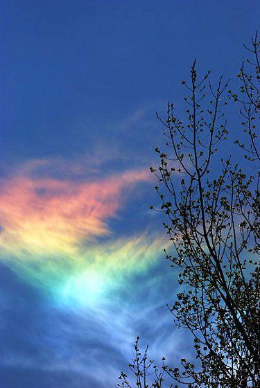 火彩虹 circumhorizon arc