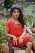 Samyuktha Hornad Glam pics-thumbnail-1