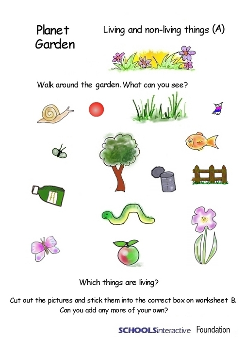Learning Inspiration Worksheet for living things and non living – Living Things Worksheet