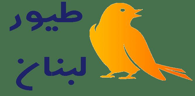 طيور لبنان lebanon bird